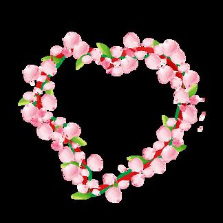 桃花花瓣節日鮮花飄落裝飾粉紅素材<i>背</i><i>景</i><i>圖</i><i>片</i>
