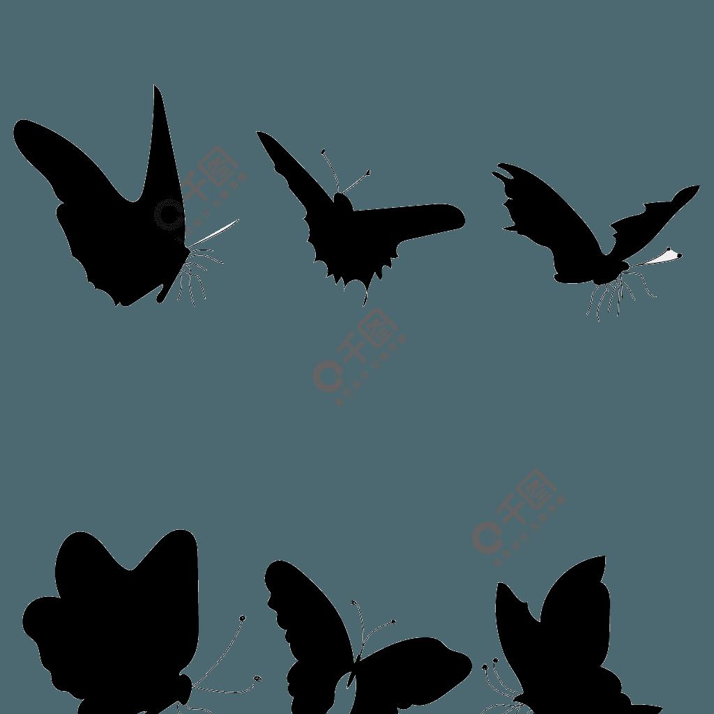 收集蝴蝶的轮廓