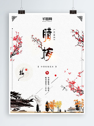 中国风梅花简约大气腊梅海报设计
