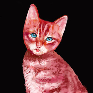 手繪風格貓紅毛貓波斯貓