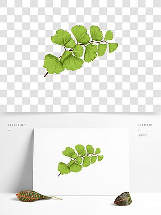 铁线蕨植物绿叶手绘风小清新元素