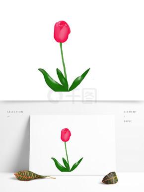 郁金香花朵绿叶粉色元素素材