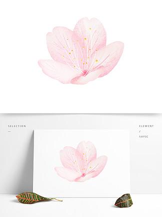 水彩花卉装饰PNG免抠图