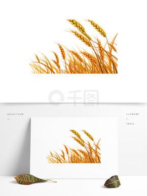 金色的小麦装饰素材