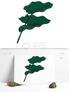 漂亮的绿叶装饰素材