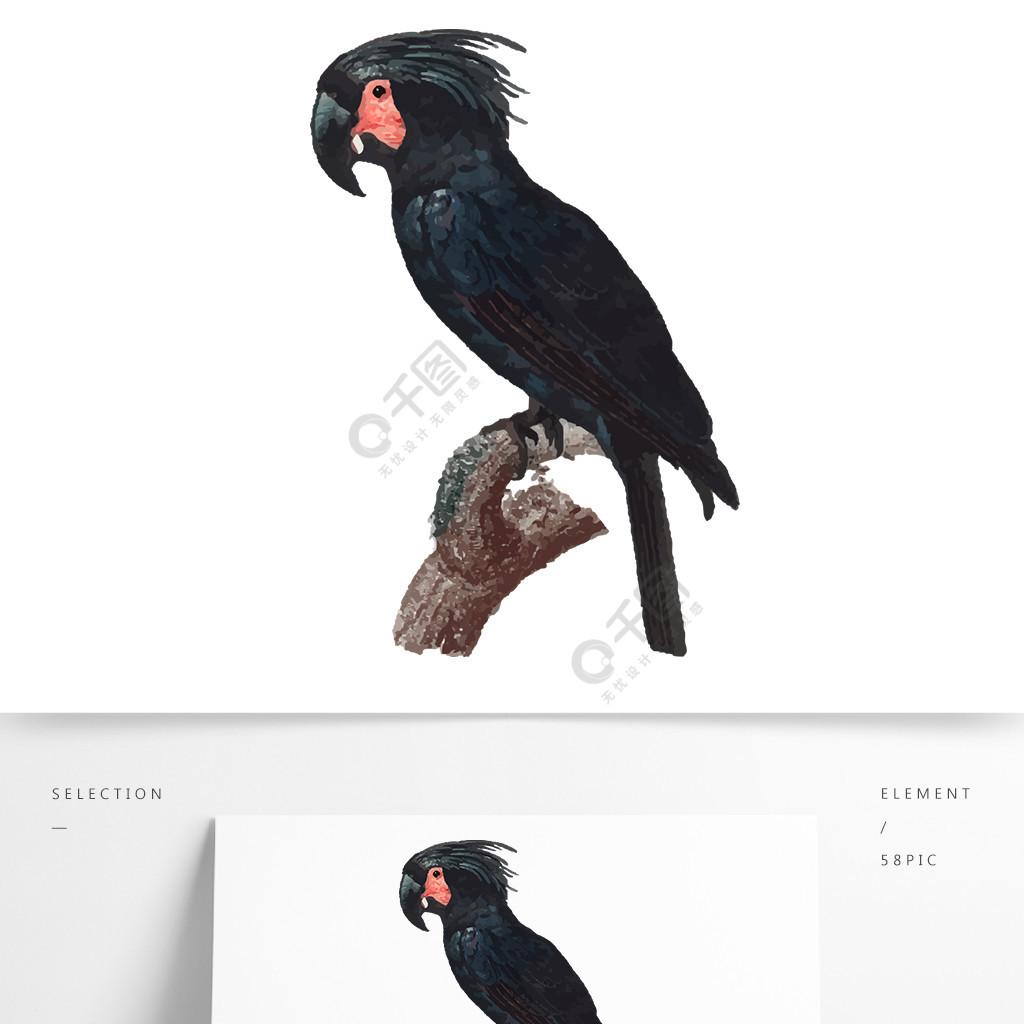 鸟类鹦鹉手绘矢量黑色元素