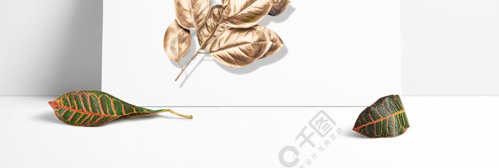 金色叶子装饰素材
