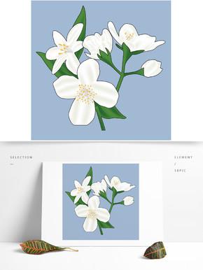 单支白色茉莉花素材