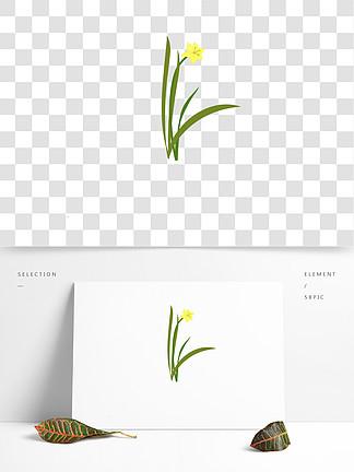蘭花手繪可商用小清新