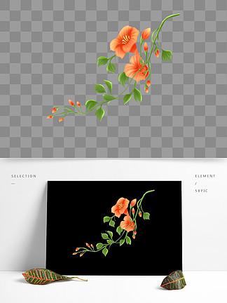 原创手绘插画花卉植物元素手绘