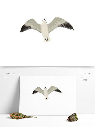 海鷗鳥類手繪插畫海報素材