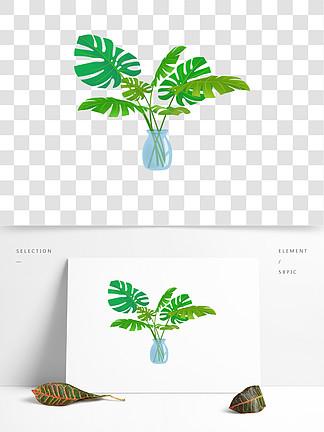 小清新龟背叶盆?#26376;?#33394;植物免抠png北欧风