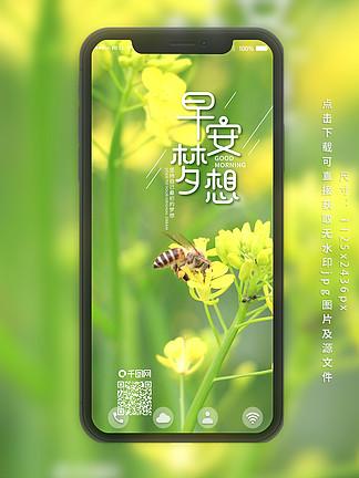 每日一签早安梦想蜜蜂采蜜手机海报