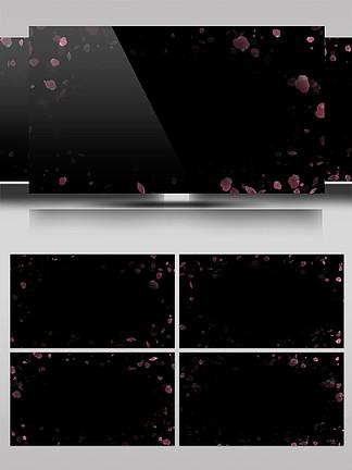 原创花瓣边框带通道动态视频