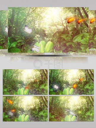 ?#20301;?#26862;林唯美蝴蝶飞舞飘动素材视频