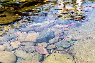 江河溪水水渠攝影圖