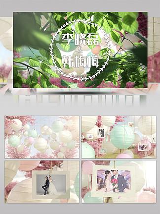 唯美小清新動畫開場MG相冊婚禮展示AE