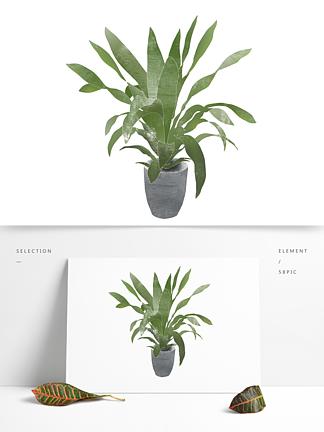 创意卡通手绘绿植盆景盆栽元素