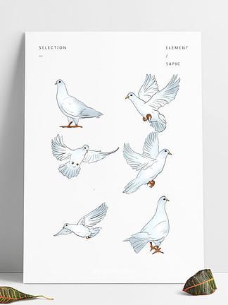 手绘卡通小清新鸽子套图