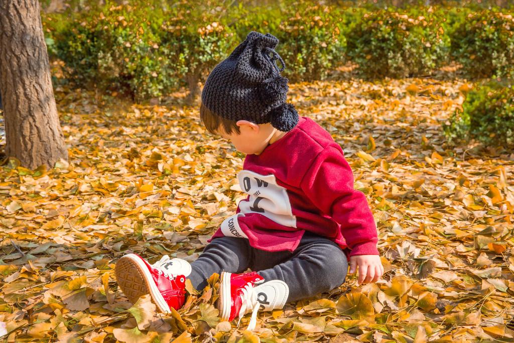 金色樹葉上玩耍的小男孩