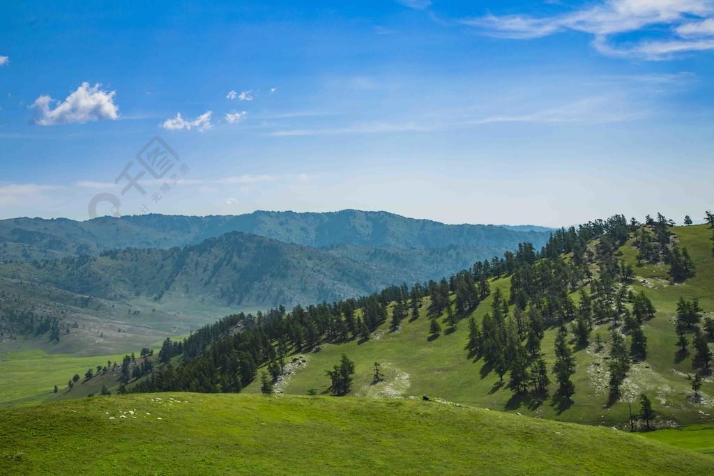 藍天白云下的森林和平原