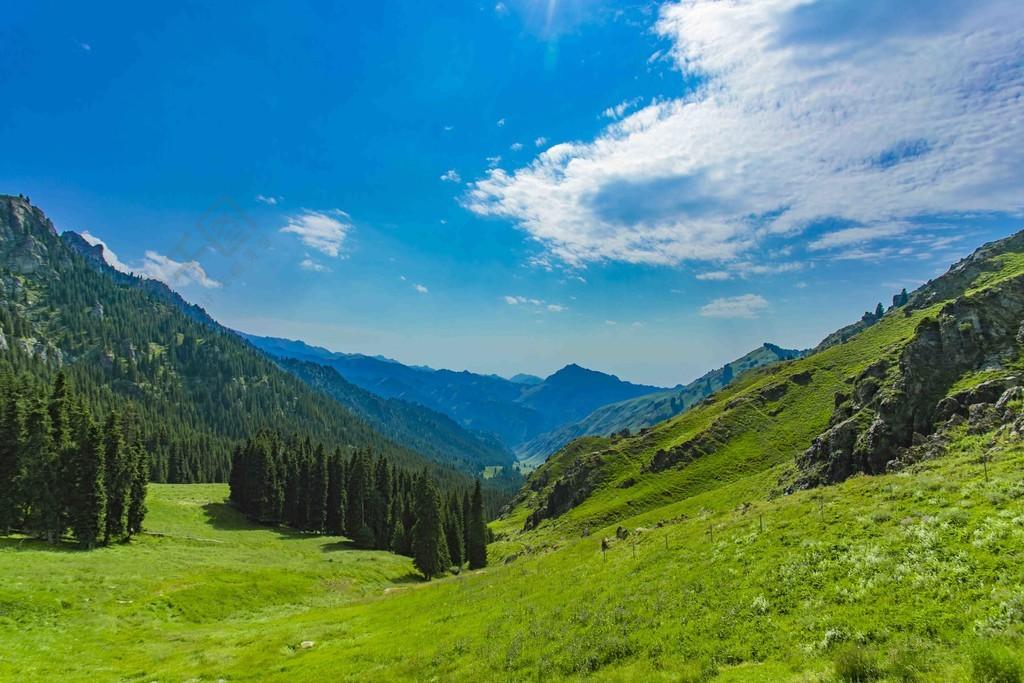 藍天白云下的森林峽谷