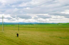 甘南旅行玛曲草原风光风景实拍图
