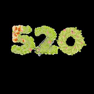 520花环叶子字体
