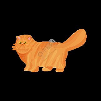 可爱简约时尚宠物猫波斯猫