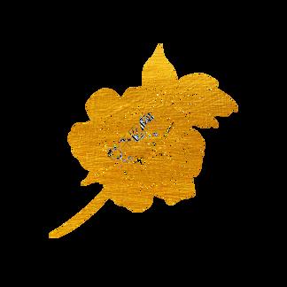烫金花草剪纸长寿花