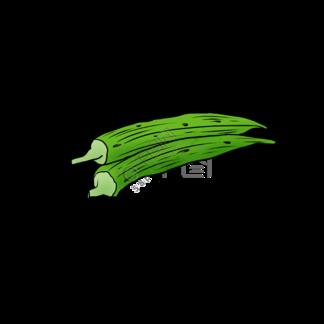 秋葵新鲜蔬菜手绘插画