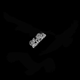 矢量手绘天空之王鹰