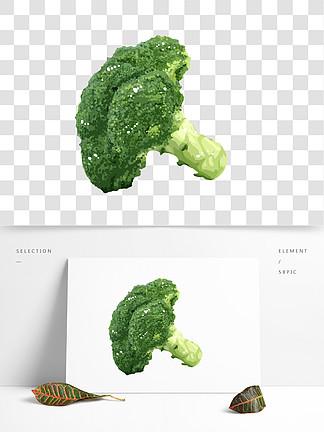 手绘蔬菜西兰花插画