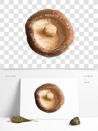 手绘蔬菜香菇插画
