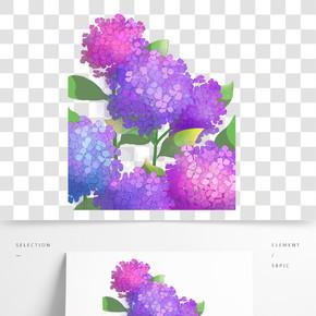 紫色花朵盛開元素