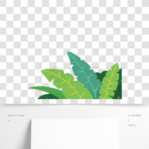 綠色植物創意葉子元素
