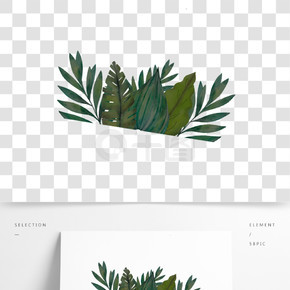 綠色熱帶植物元素