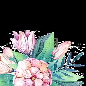 母亲节粉色绿色花朵树叶唯美清新自然免扣png