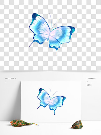 翩翩起舞的水蓝色<i>梦</i><i>幻</i><i>蝴</i><i>蝶</i>