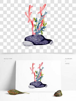 珊瑚植物海洋生物