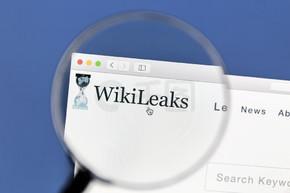 在电脑屏幕上的维基解密网站