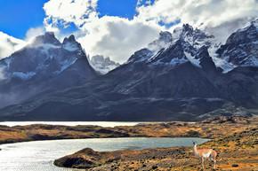 国家公园托雷斯德尔潘恩在智利