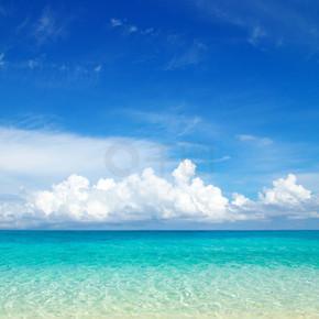 海滩和热带海