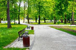 绿色城市公园