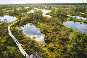 在拉脱维亚里加的木桥和绿色植物鸟瞰图