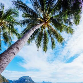 热带海滩和海