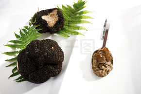 在勺子上的黑块菌和黑松露酱