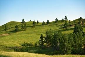布莱克山景观