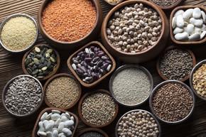 食品主题-豆类蔬菜