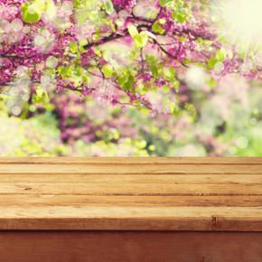 空木甲板表